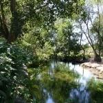 Девненские источники в Варне